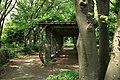 東高根森林公園 - panoramio (51).jpg