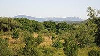 - panoramio (5543).jpg