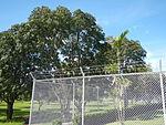 02461jfHour Great Rescue Concentration Prisoners Sundials Cabanatuan Memorialfvf 21.JPG