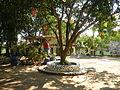 06017jfBahay Puso Virgen Milagrosa Rosario Seminary Balanga City Bataanfvf 07.JPG