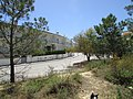 11-05-2017 Urbanization Monte Balaia, Olhos de Água (3).JPG