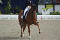 13-04-21-Horses-and-Dreams-Fabienne-Lütkemeier (20 von 30).jpg