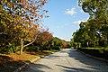 141115 Hyogo prefectural Ako Seaside Park Japan04n.jpg