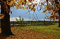 1920 etwa wurden die Alleen der Kastanienbäume auf dem Hermannshof in Völksen gepflanzt. Blick über den Gartenzaun auf dem Tönniesberg nach Westen ins Tal.jpg