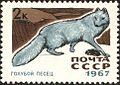 1967 CPA 3534.jpg