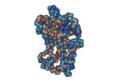 1D9C Bovine-Interferon-Gamma05.png