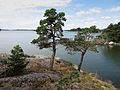 2011-07-30-Kalliosaari-by-RalfR-06.jpg