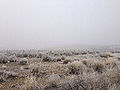 2014-12-17 09 45 15 Freezing fog in Elko, Nevada.JPG