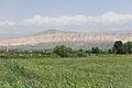 2014 Prowincja Ararat, Krajobraz widziany z drogi prowadzącej do klasztoru Chor Wirap (04).jpg