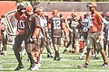 2016 Cleveland Browns Training Camp (28074734614).jpg