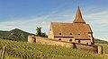 2017-05-21-15-21-42 Les Forts Trotters au Sentier des Grands Crus (36896154863).jpg
