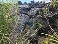 2018-05-15-Kilauea-Highly-Viscous-Lava.jpg