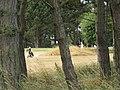 2018-07-18 Mundesley golf course (4).JPG