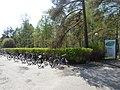 2019-05-22 Oulun hautausmaa 05.jpg