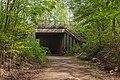 20200413State forest Saarbrücken3.jpg