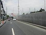 2256Elpidio Quirino Avenue Airport Road NAIA Road 11.jpg