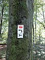 6-Naurod-L3027.jpg