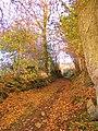 63700 Montaigut, France - panoramio (1).jpg