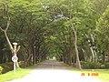 AIT - panoramio - Seksan Phonsuwan (20).jpg