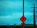 ATC Power Line - panoramio (35).jpg