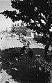 A CAMEL CARAVAN ON KING GEORGE STREET IN TEL AVIV. שיירת גמלים ברחוב קינג ג'ורג' בתל אביב.D403-144.jpg