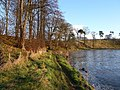 A Riverside Walk - geograph.org.uk - 90055.jpg