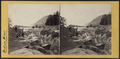 A View from Cold Spring, looking North, by E. & H.T. Anthony (Firm) 5.png
