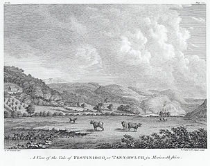 A view of the Vale of Festiniogg, or Tan-Y-Bwlch, in Merionethshire