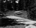 A completed campsite with firepit and picnic table, Cedar Breaks National Monument campground. ; ZION Museum and Archives Image (56cf38085da244788b0b0bcc1030613b).tif