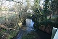 A distributary of the River Darent, Pilgrim's Way West - geograph.org.uk - 1722128.jpg