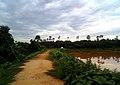 A rural road at Peddipalem Village.jpg