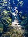 A shaded waterfall along the Eastside Trail. (9aff379d-88fc-45df-90e6-df2f4da996d1).JPEG