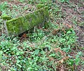 A woodland bench with views of the sea - geograph.org.uk - 928007.jpg