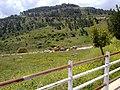 Aadaysit Marjaayoun, Lebanon - panoramio (5).jpg