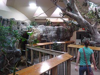 Abilene Zoological Gardens - The Tropical Aviary