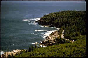 Acadia National Park ACAD0224.jpg