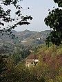 Acqui Terme (Italy) (23862728702).jpg