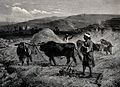 Agriculture; villagers (perhaps Syrian) threshing corn by tr Wellcome V0025698.jpg