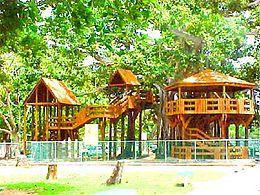 Aguadilla Banyan Treehouse