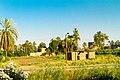 Al Bairat, Luxor, Luxor Governorate, Egypt - panoramio (66).jpg