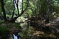 Aldeias e Margens do Rio Ovelha XIV (35782516754).jpg