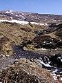 Allt Tarsuinn Mor - geograph.org.uk - 377788.jpg
