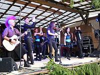 Altburg-Festival 2013 0019.JPG