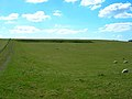 Ancient Field System, Eastdean Down - geograph.org.uk - 147244.jpg