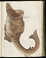 Animal drawings collected by Felix Platter, p1 - (151).jpg