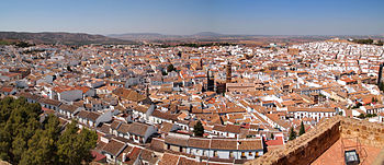 Image Result For Car Rent Malaga