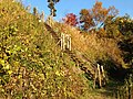 Aone, Midori Ward, Sagamihara, Kanagawa Prefecture 252-0162, Japan - panoramio (46).jpg