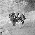 Arabische vrouwen met kinderen op weg naar een polikliniek, Bestanddeelnr 255-0940.jpg