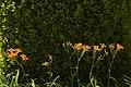 Aranjuez PM 080090 E.jpg