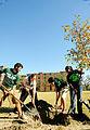 Arbor Day (4098640444).jpg